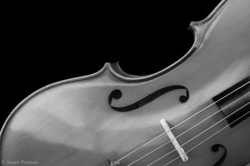 Mello Cello II