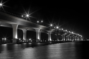 The Roosevelt at Night II