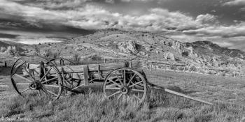 Wayward Wagon