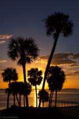 Florida Sunrise III