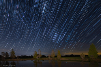 Star Trails Over Eastern Sky