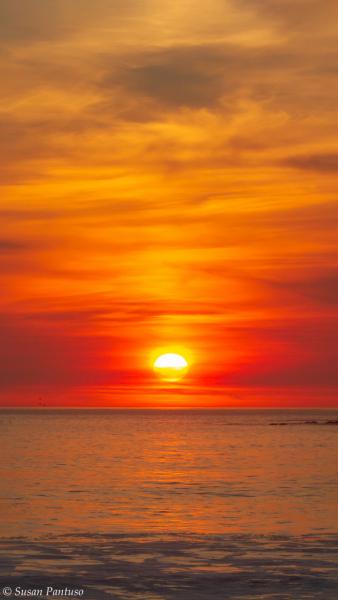 La Push Sunset II