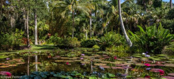 McKee Botanaical Garden