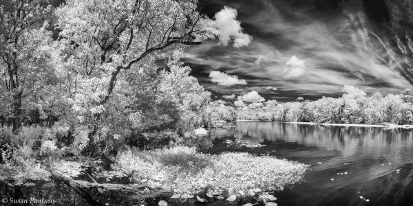 Saint Johns River