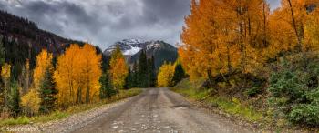 Autumn State of Mind